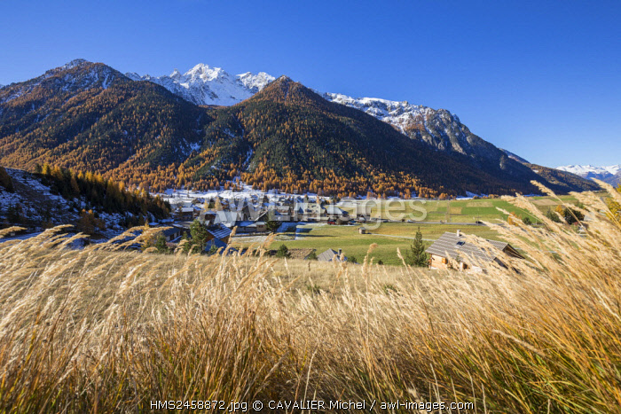 France, Hautes Alpes, regional natural reserve of Queyras, the village of Ceillac, in the background the Crete of Saume