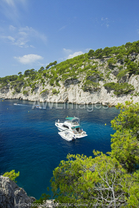 France, Bouches du Rhone, National Park Calanques, Marseille, creek of Port Pin