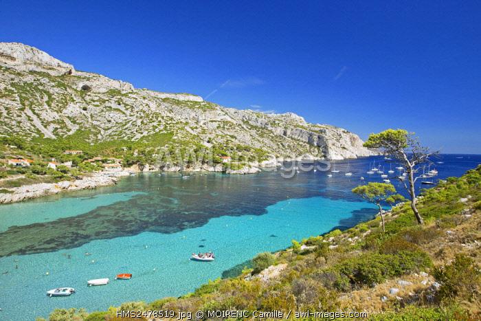 France, Bouches du Rhone, Calanques National Park, Marseille, cove Sormiou