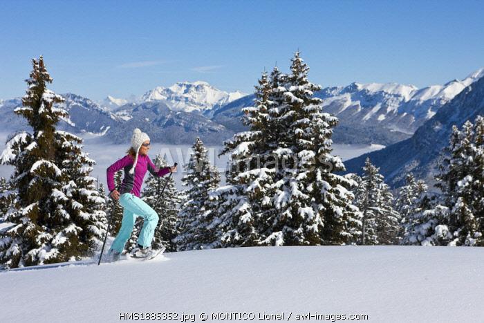 France, Savoie, Parc Naturel Regional du Massif des Bauges (Regional Natural Park of the Massif des Bauges), Domaine des Aillons Margeriaz, woman practicing snowshoeing