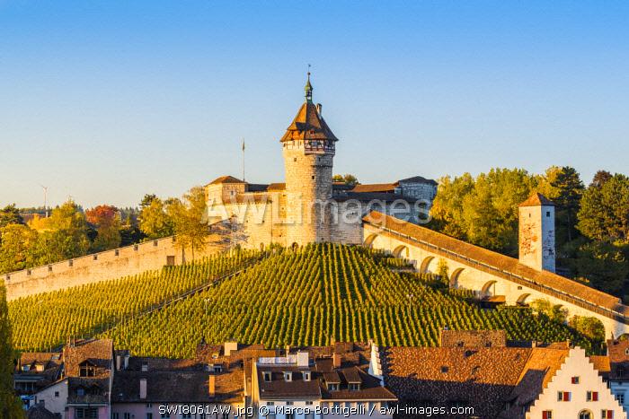 Munot fortress and vineyards, Schaffhausen, Switzerland.