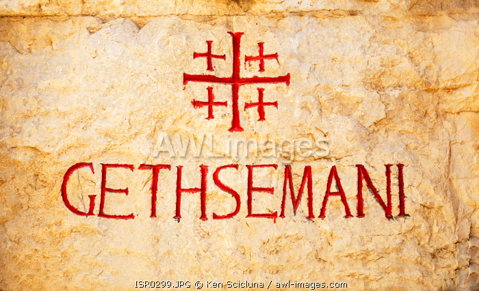 awl-images.com - Israel / Israel, Jerusalem. A sign with the Jerusalem Cross at the place believed to be the Gethsemani in the Bible where Jesus of Nazareth prayed in the Garden of Olives before being betrayed.