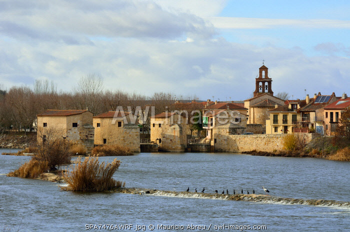 awl-images.com - Spain / The watermills of Zamora along the Douro river. Castilla y Leon, Spain