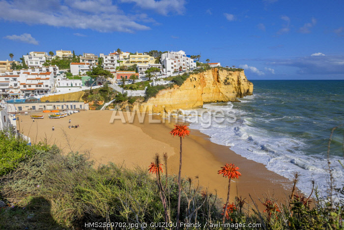 awl-images.com - Portugal / Portugal, Algarve region, Carvoeiro little fishing harbour