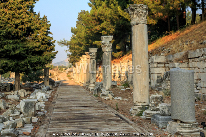 Turkey, Izmir Province, Selcuk, ancient city Ephesus, ancient world center of travel and commerce on the Aegean Sea at mouth of Cayster River. Columned Harbor Street near the Agora.