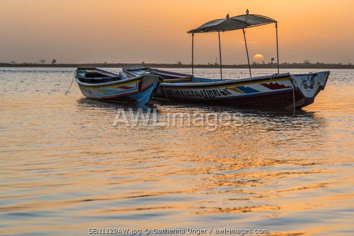 Africa, Senegal, Sine-Saloum-Delta. Fishing boats at sunrise