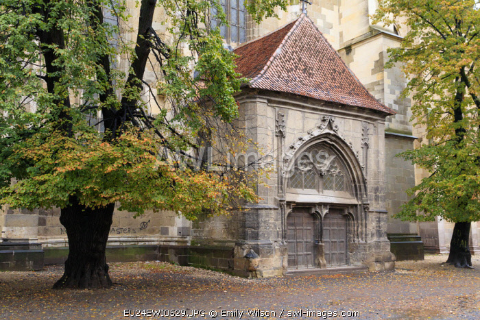Brasov, Romania. Detail of church exterior.