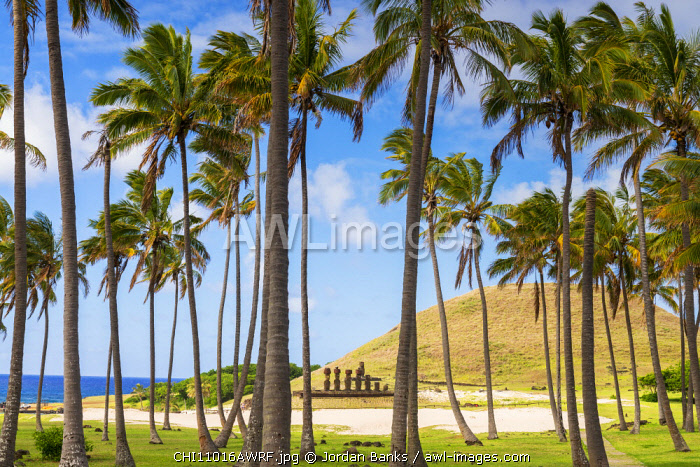 Maoi at Anaken Beach, Easter island, Polynesia, Chile
