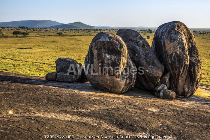 awl-images.com - Tanzania / Tanzania, Serengeti National Park, Moru Kopjes. Ancient granite outcrops adorn the southern Serengeti savanna grasslands. They are known as kopjes, meaning little head in Afrikaans and are hundreds of millions of years old. Rock castles in an ocean of grass.
