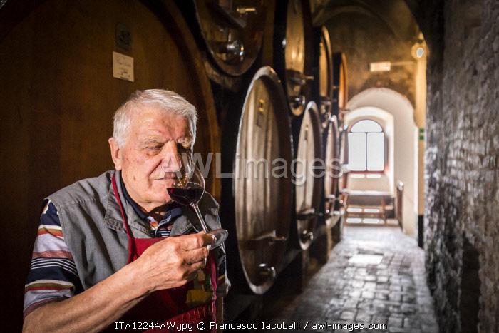 Italy. Tuscany. Siena district Val di Chiana. Montepulciano. Contucci's wineries. Adamo Pallecchi, trusty butler, smelling red Nobile of Montepulciano wine.