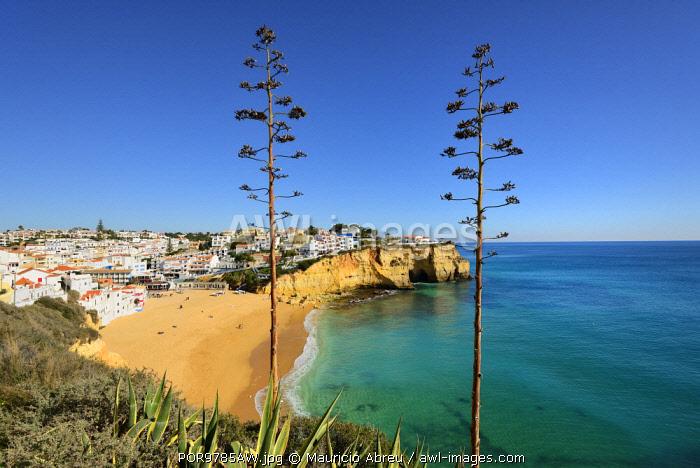 The beach and village of Carvoeiro. Lagoa, Algarve, Portugal