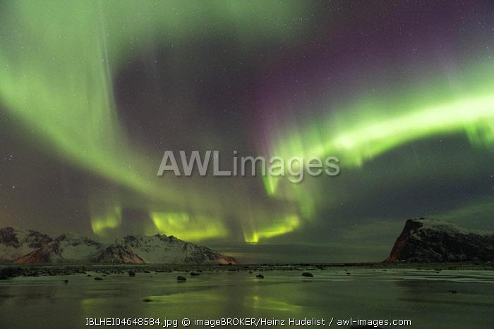 Northern lights on the coast near Gimsoy, Lofoten, Norway, Europe