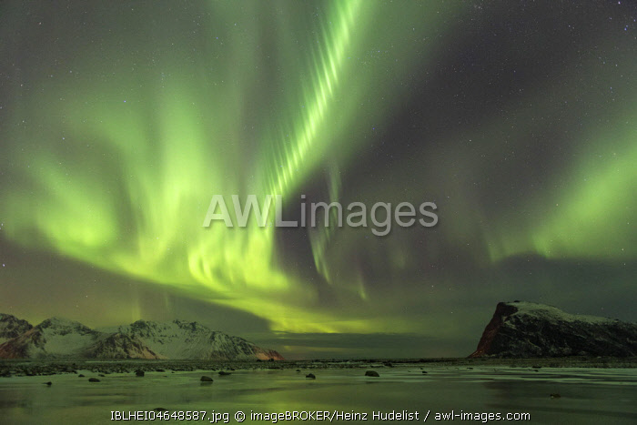 Northern lights on the coast near Gimsoy, Lofoten, Norway, Europe