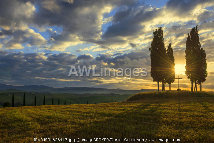 Tuscany landscape with cypresses, sunset, San Quirico d' Orcia, Val d' Orcia, Tuscany, Italy, Europe