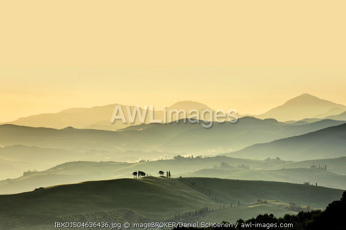 Tuscany landscape with hills at sunset, San Quirico d' Orcia, Val d' Orcia, Tuscany, Italy, Europe