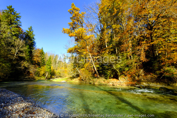 River Mangfall, between Valley and Maxlmuhle, Mangfall Valley, Upper Bavaria, Bavaria, Germany, Europe