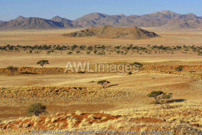 Barren grassland, Gondwana Namib Park, near Sesriem, Hardap Region, Namibia, Africa