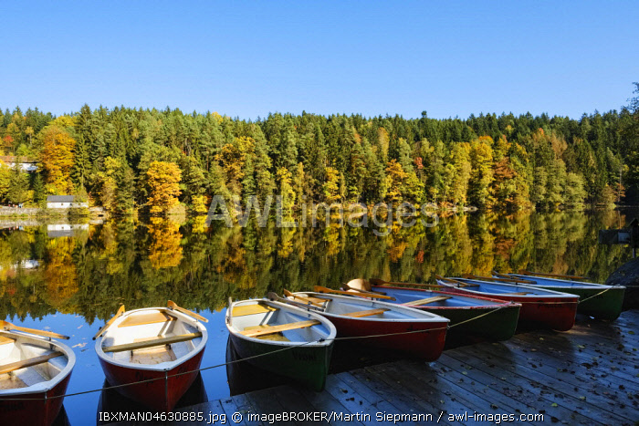Rowing boats, Hollensteinsee, near Viechtach, Bavarian Forest, Upper Palatinate, Bavaria, Germany, Europe