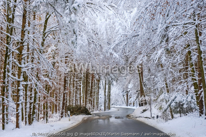 Country road through snowy forest, near Dietramszell, Upper Bavaria, Bavaria, Germany, Europe