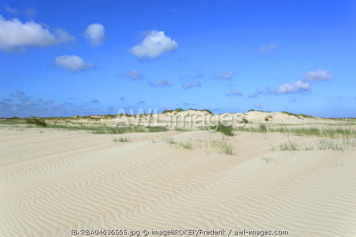 Dune landscape with wavelike structure in white sand, ripple, Norderney, East Frisian Islands, North Sea, Lower Saxony, Germany, Europe