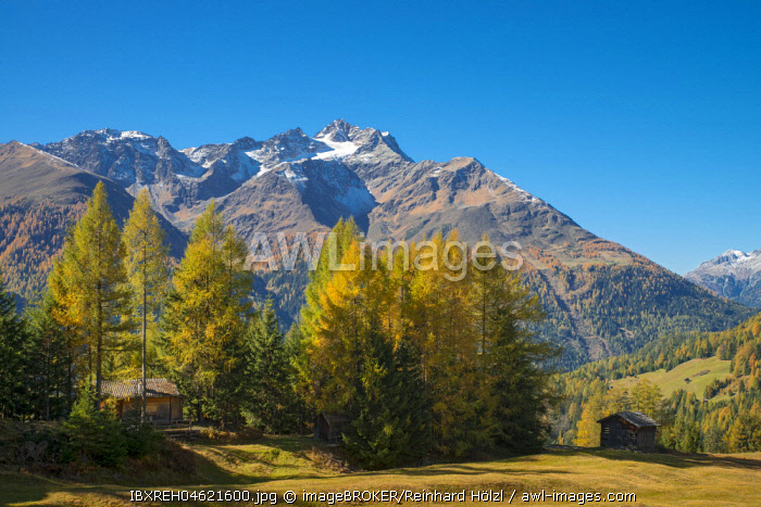 Autumnal mountain landscape with alpine huts, behind Hoher Riffler, Dawin-Alpe, forest meadows, Strengen am Arlberg, Tyrol, Austria, Europe