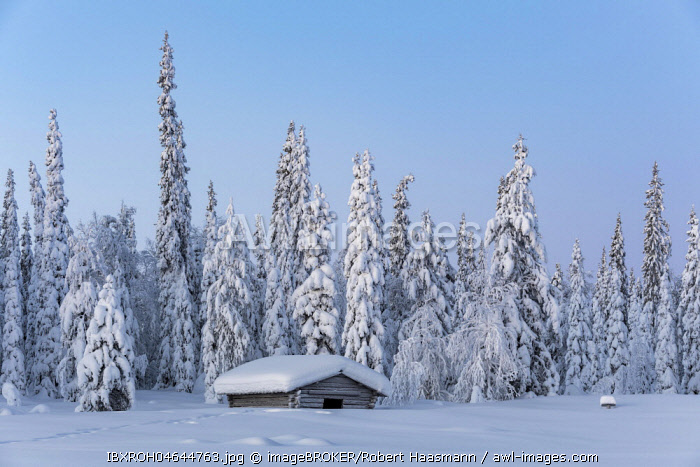 Snow-covered hut in winter landscape, Pallastunturi, Pallas-Yllästunturi National Park, Muonio, Lapland, Finland, Europe