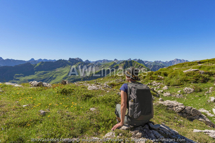 Koblat High Trail at the Nebelhorn, rear Hochvogel, Allgau Alps, Allgau, Bavaria, Germany, Europe