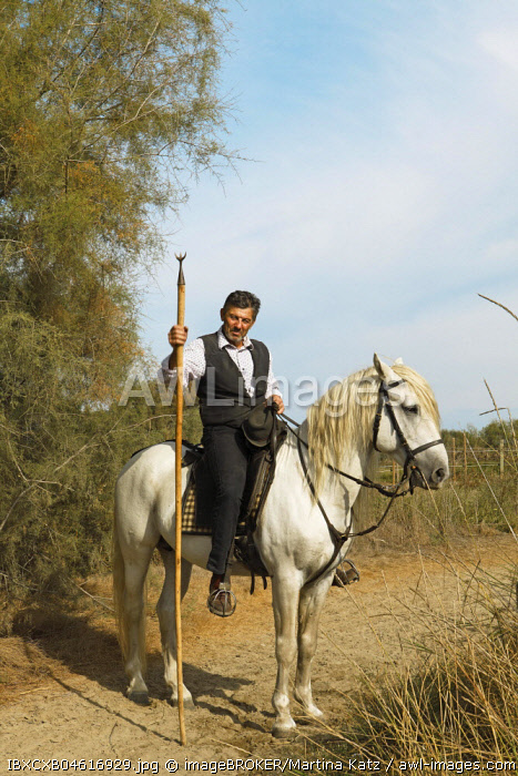 Gardian or traditional bull herder in typical working clothes on a Camargue horse, Le Grau-du-Roi, Camargue, France, Europe