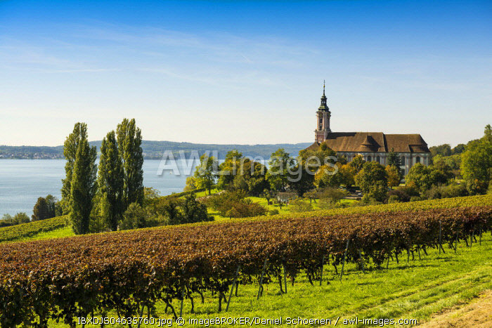 View of Lake Constance with vineyards and Birnau Monastery, near Überlingen, Baden-Wurttemberg, Germany, Europe