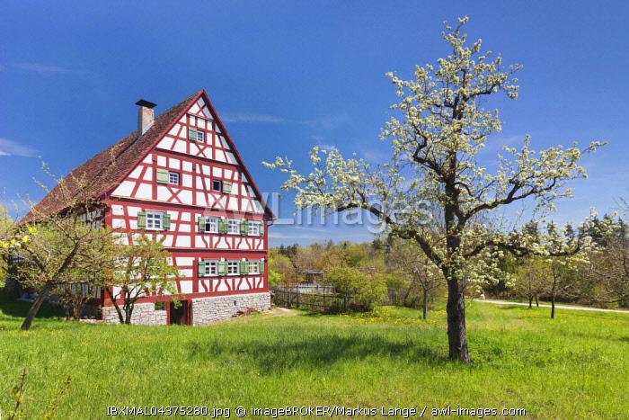 Open-air museum, Neuhausen ob der Eck, Swabian Jura, Baden-Wurttemberg, Germany, Europe