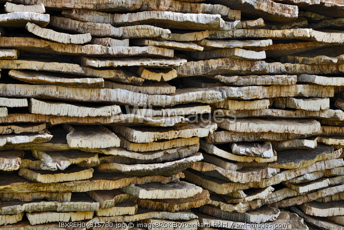 Stacked cork bark of cork oak (Quercus suber), Sardinia, Italy, Europe