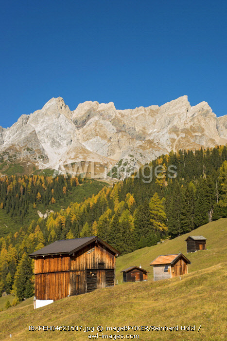 Autumnal mountain landscape with alpine huts, behind the Eisenspitze, Dawin-Alpe, forest meadows, Strengen am Arlberg, Tyrol, Austria, Europe