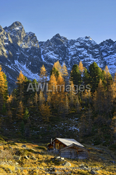 Innerbergli-Alm in autumn in the Samnaungruppe, behind summit Mittagskopf and Mittagsscharte, Mathon in the Paznaun Valley, Tyrol, Austria, Europe