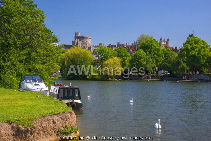 UK, England, Berkshire, Windsor, Windsor Castle and River Thames