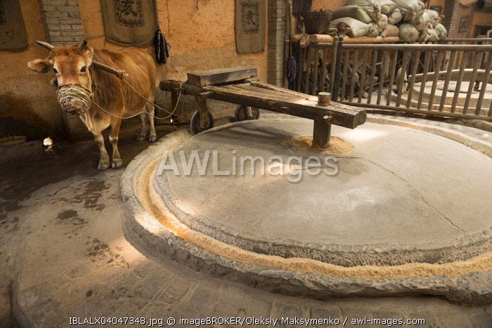 Ox powered grain mill at a rural history museum, Zhangjiajie, Hunan, China, Asia