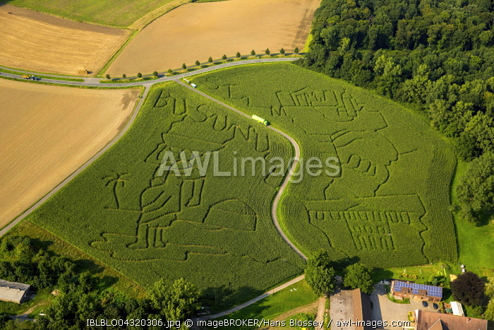Aerial view, labyrinth in Mausfeld, Lunen, agriculture, Ruhr district, North Rhine-Westphalia, Germany, Europe