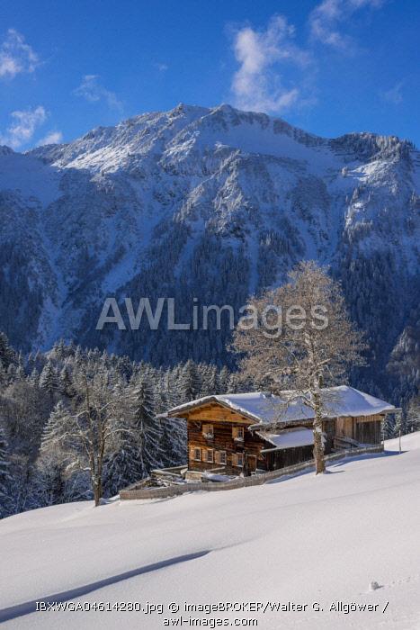 Mountain farm in winter in Gerstruben, a former mountain farming village in the Dietersbach valley near Oberstdorf, behind it the Himmelschrofenzug, Allgauer Alps, Allgau, Bavaria, Germany.