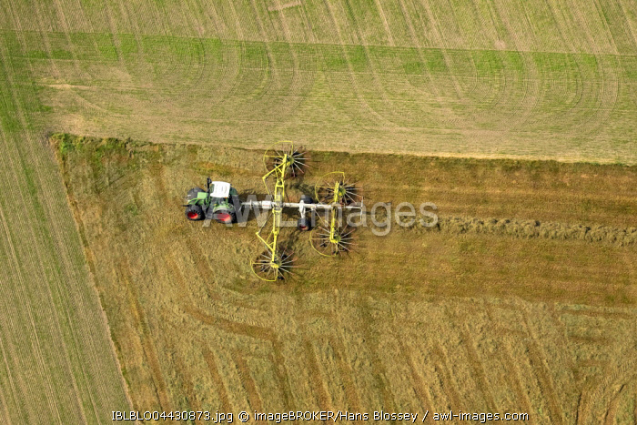 Tractor with hay rakes, agriculture, fields, Ruhr district, North Rhine-Westphalia, Germany, Europe
