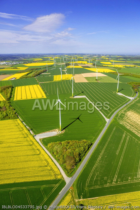 Wind park, wind energy plant, alternative energy, Haarstrang near Ruthen, rape fields on the city boundaries between Ruthen, Warstein-Belecke and Anrochte, agriculture, old barn, fields, meadows, farmland, aerial photo, Ruthen, Sauerland, North Rhine-West