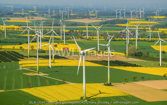 Wind park on the Haarstrang, wind power plants, wind turbines, regenerative energy, rape fields on the city boundaries between Warstein-Belecke and Anrochte-Erwitte, green grain fields, yellow rape fields, agriculture, aerial photo, Warstein, Sauerland,