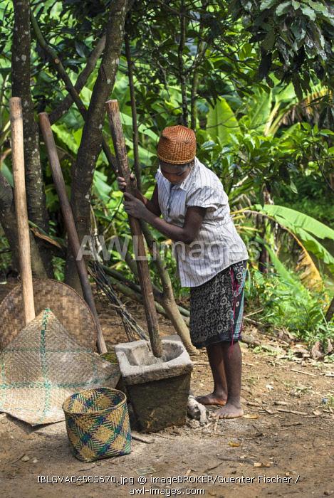 Woman pounding rice, Betsimisaraka Ethnie, Ambavaniasy, Madagascar, Africa
