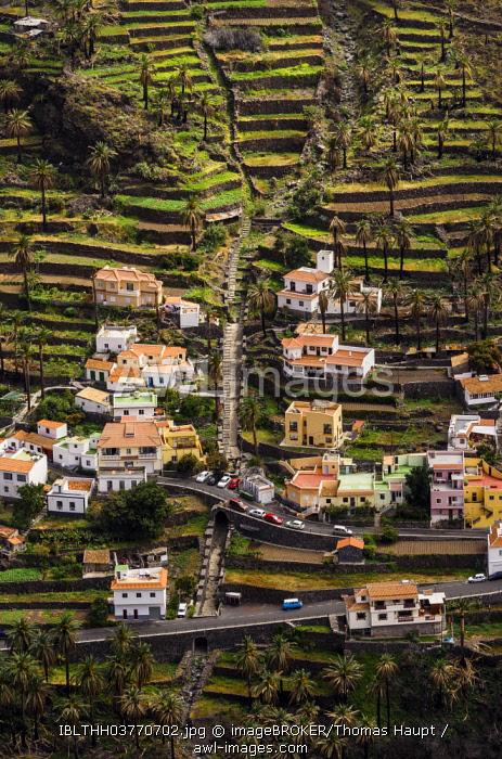 Houses in the valley, Lomo del Moral, La Gomera, Canary Islands, Spain, Europe