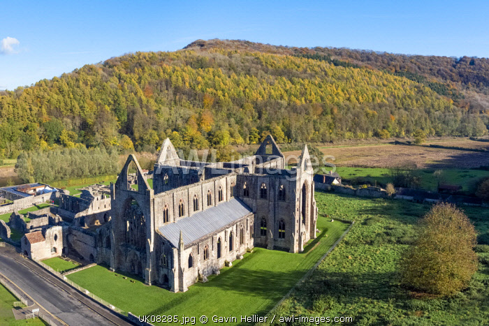 Tintern Abbey, Tintern, Wye Valley, Monmouthshire, Wales, United Kingdom