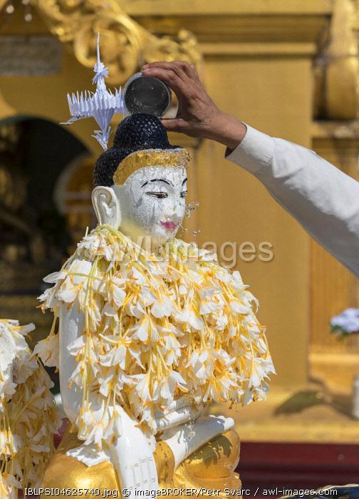 Ritual of pouring water over Buddha statue, Shwedagon Pagoda, Yangon, Rangoon, Myanmar, Burma, Asia