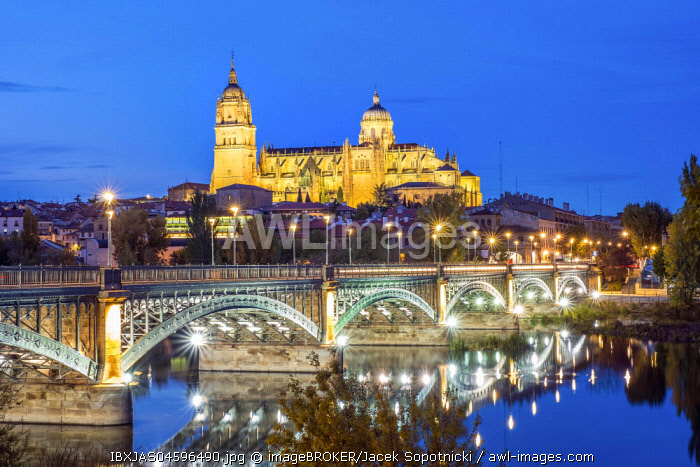 Cathedral with bridge over Tormes river, Salamanca, Castile and Leon, Spain, Europe