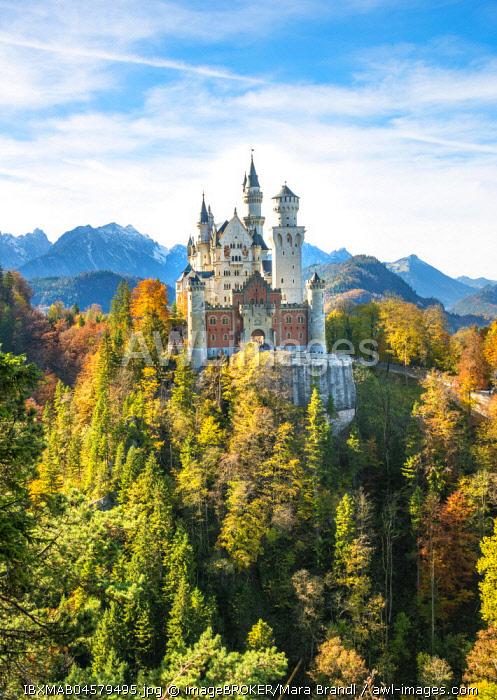 Neuschwanstein Castle in autumn, Schwangau, East Allgau, Allgau, Swabia, Upper Bavaria, Bavaria, Germany, Europe