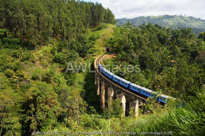 Train on the Nine Arches Bridge in the highlands near Ella, Sri Lanka, Asia