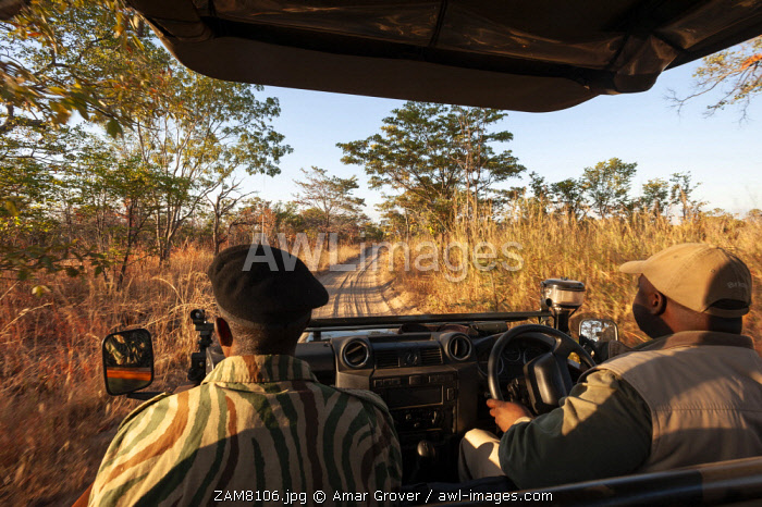 Zambia, South Luangwa National Park, A safari vehicle drives along a sandy track.