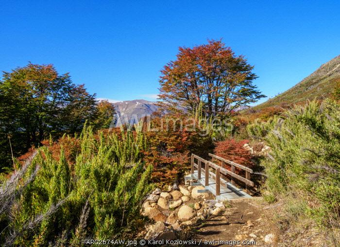 Trail to Refugio Frey, Nahuel Huapi National Park, Rio Negro Province, Argentina