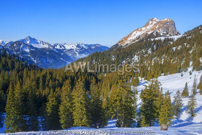 View at Einstein mountain and Aggenstein mountain, Tannheim valley, Allgäu, Tyrol, Austria